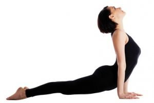 Upward Facing Dog - Urdhvamukhasvanasana