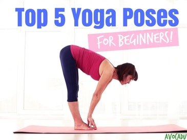 top 5 yoga poses for beginners  avocadu